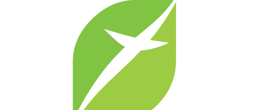 Grøn Kirke håb på dagsorden